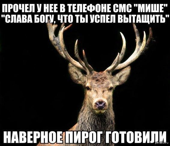 1391443631_1887011295.jpg